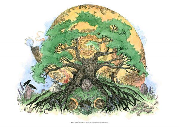 Solstice Oak