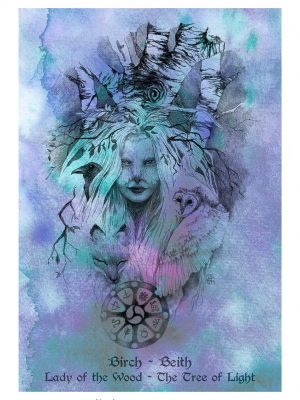 Birch Beith: Lady of the Wood, The Tree of Light