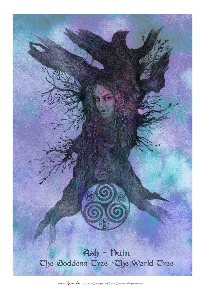 Ash Nuin: The Goddess Tree, The World Tree, The Faerie Tree