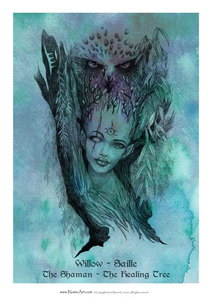 Willow Saille: The Shaman, The Healing Tree