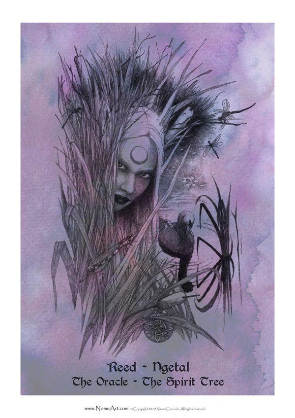 Reed Ngetal: The Oracle, The Spirit Tree